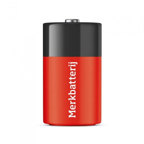 D-batterijen 2-pack Set van 2 stuks