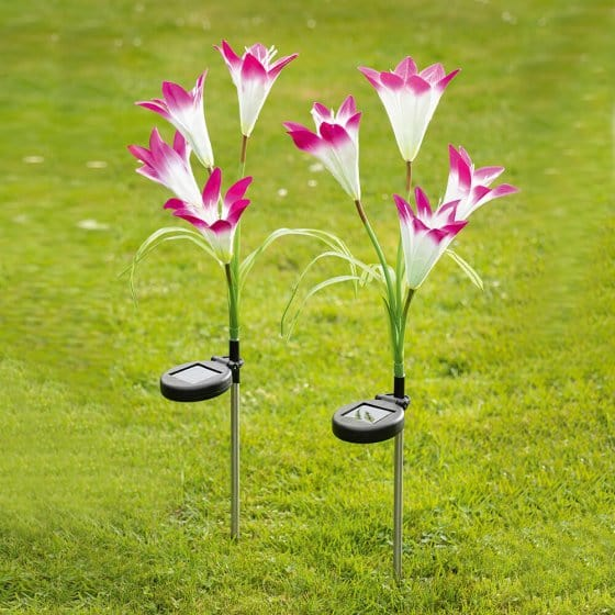 Ledbloemen op zonne-energie Set van 2 stuks