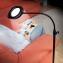 Staande loep met LED-lamp - 1