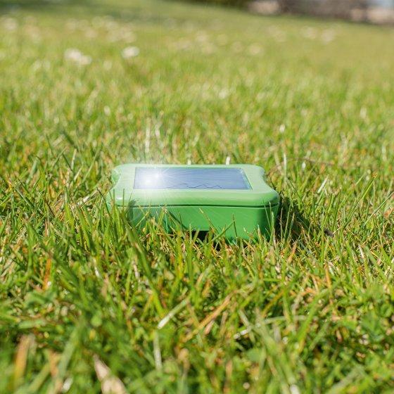 Mollen-mierenverjager Deluxe op zonne-energie